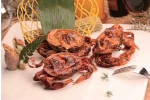 缅甸软壳蟹