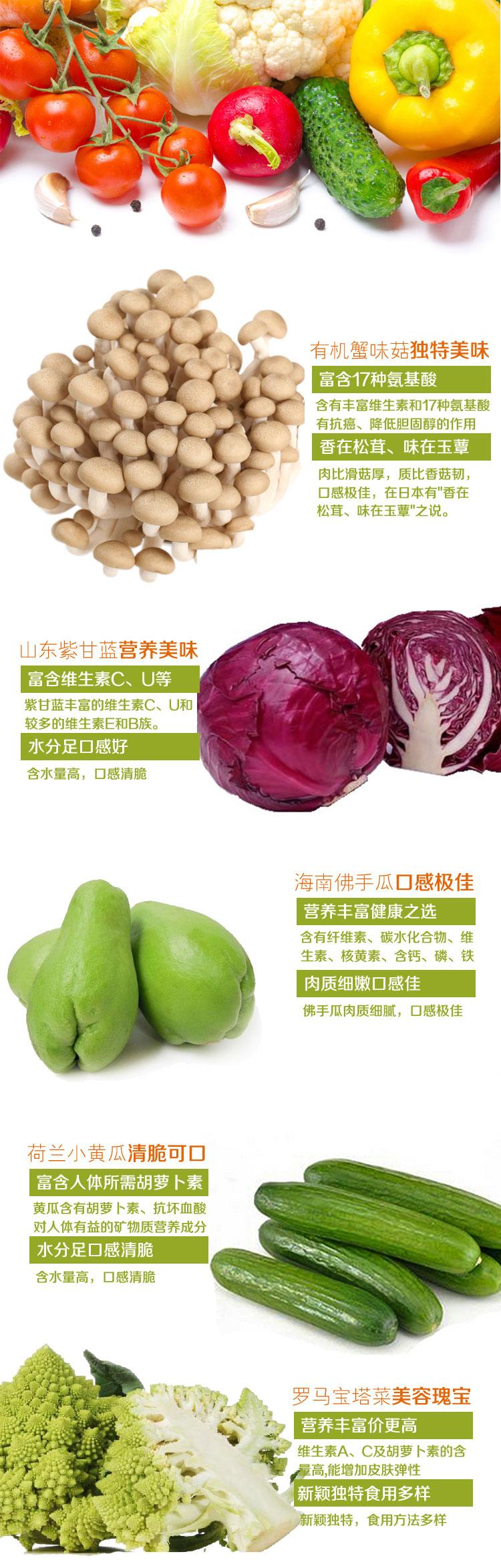 蔬菜2副本_01