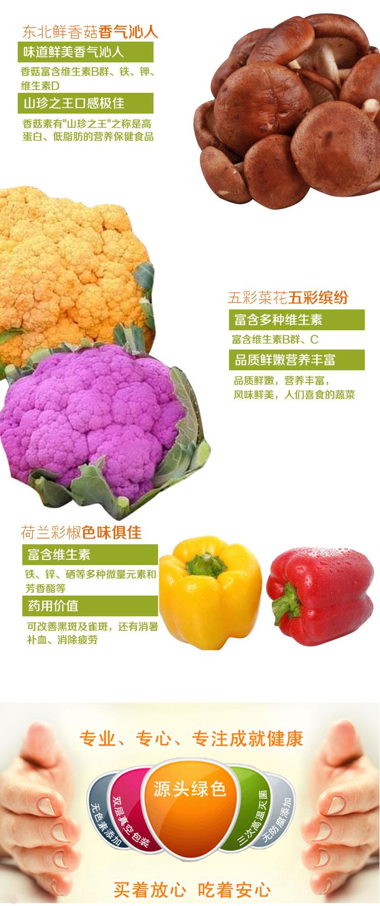 蔬菜2副本_03