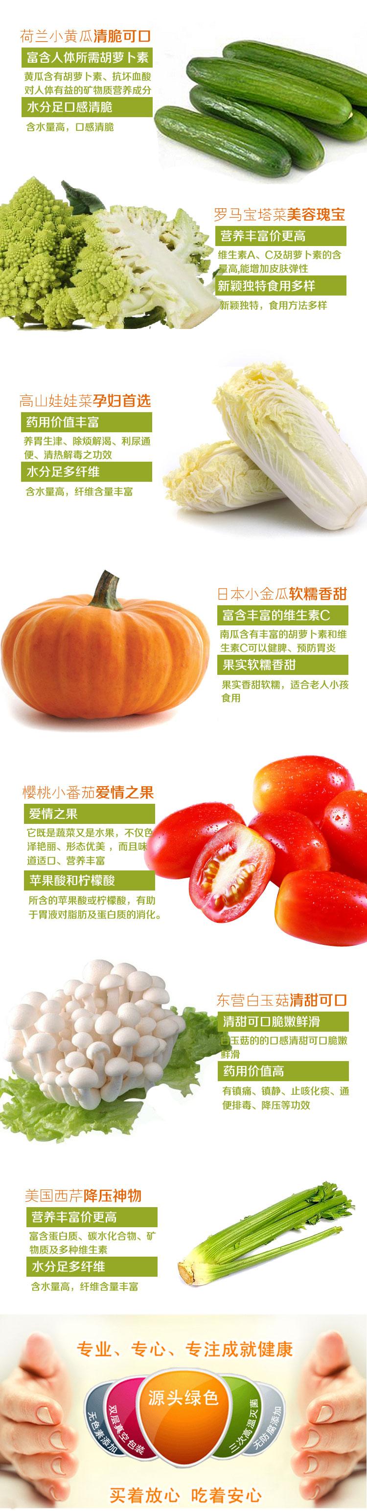 蔬菜1副本_02