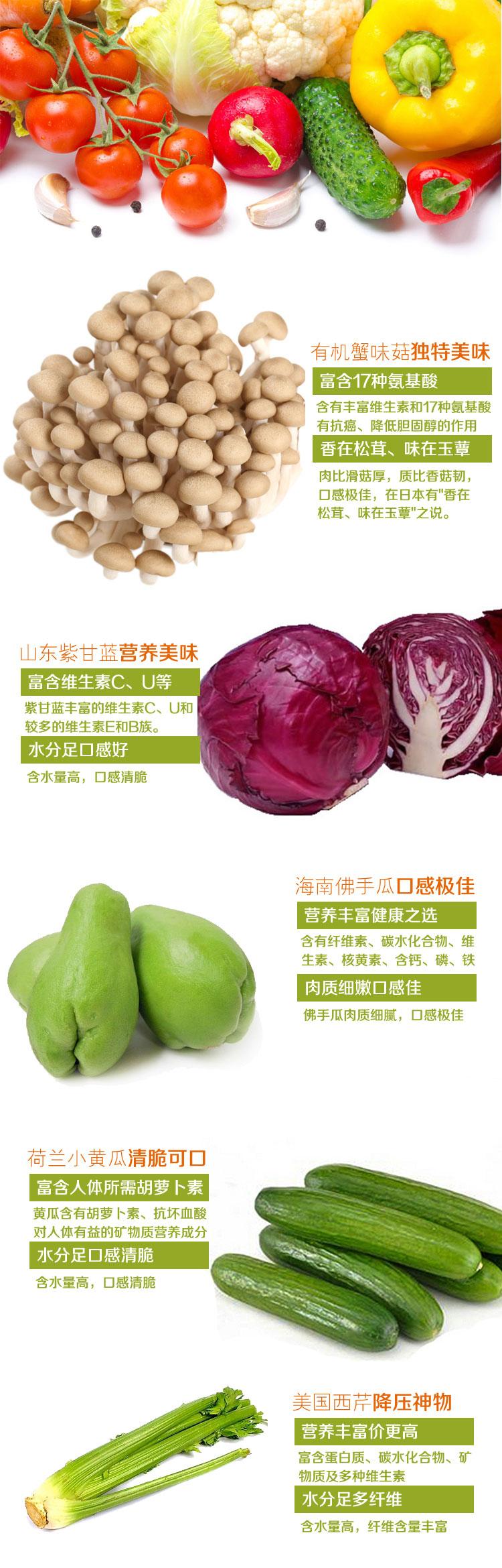 蔬菜3副本_01
